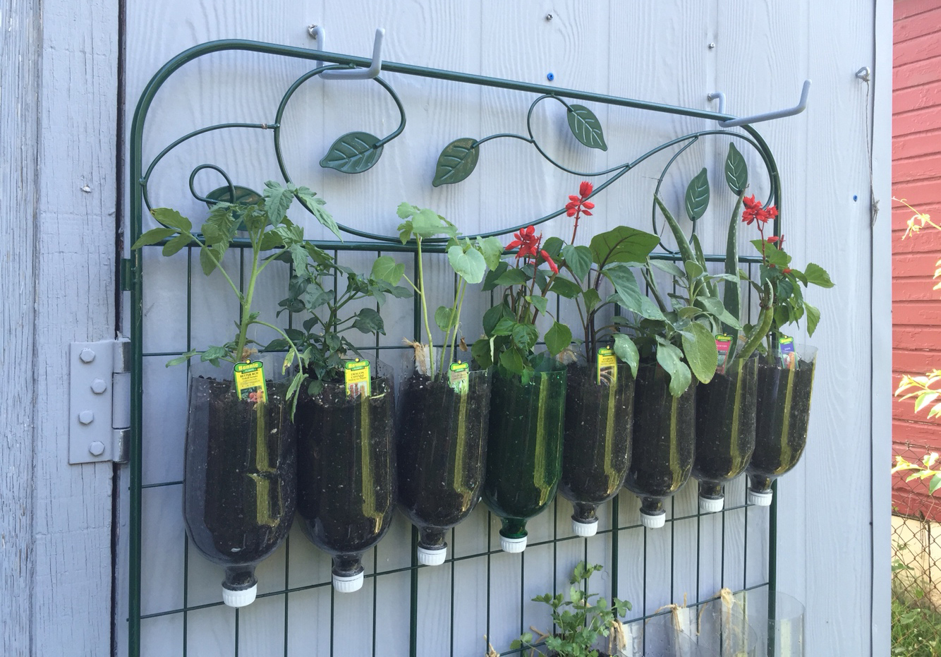 How to Build a DIY Vertical Garden